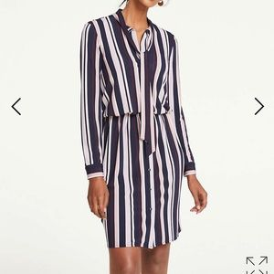 Ann Taylor XS tie neck shirt dress